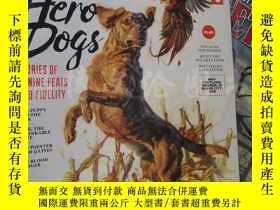二手書博民逛書店Outdoor罕見Life Hero Dogs : Stories of Canine Feats and Fid