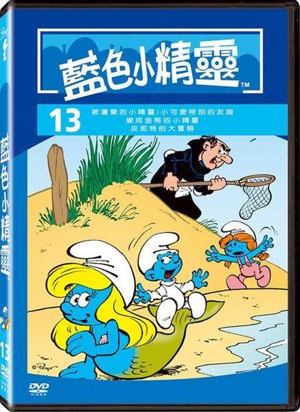 藍色小精靈 13 + 14 + 15 DVD (音樂影片購)