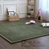 地毯/日式榻榻米珊瑚絨加厚飄窗滿鋪「歐洲站」