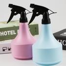 花與花器丨粉色藍色彩色噴水壺家庭園藝綠植...