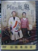 挖寶二手片-P13-014-正版DVD*日片【阿基里斯與龜】-北野武