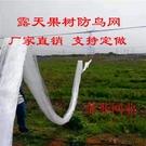 果園防鳥網果樹櫻桃葡萄防鳥用的網魚塘天網大棚防護尼龍網養殖網 快速出貨
