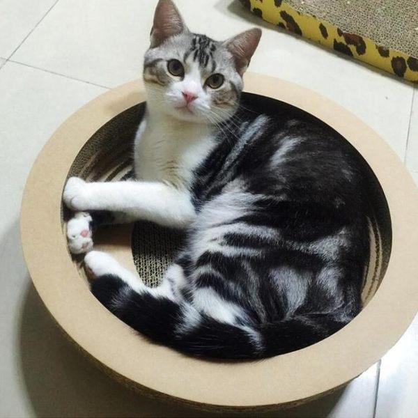 貓抓板寵物玩具用品紙盒瓦楞紙磨爪器貓咪貓窩方形玩物貓爪板 玩趣3C