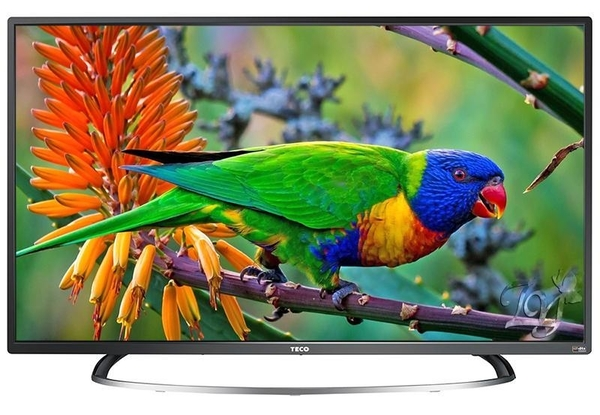 【免運費】東元 43吋 LED液晶電視/液晶顯示器+視訊盒 TL43A1TRE 43型電視 全機三年保固