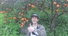 15斤全台最甜小橘子 桶柑 花蓮無毒農業原住民品種原生種 清明節禮盒 2月水果