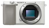 索尼 SONY A6100 單機身 BODY ILCE-6100 公司貨 α6100 全片幅 晶豪泰3C 專業攝影 高雄