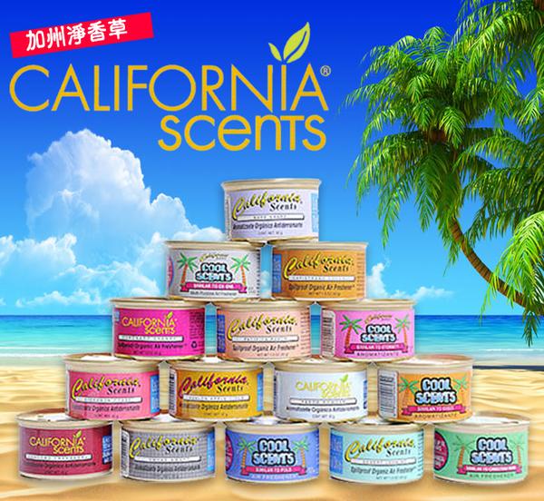 California Scents加州淨香草~ 芳香劑42G【彤彤小舖】