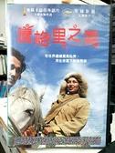 挖寶二手片-H09-088-正版DVD-電影【騰格里之愛】-奧斯卡最佳外語片(直購價)