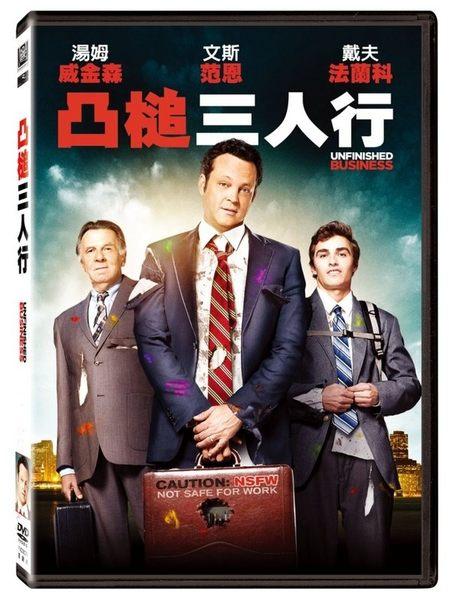 凸槌三人行 DVD  Unfinished Business  (購潮8)