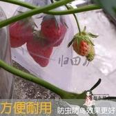 防鳥網 歸田廬桃子西紅柿草莓枇杷葡萄無花果套袋防鳥防蟲袋子水果網袋