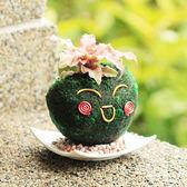 【迎光】心心相印苔球-綠