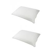 (組)馬來西亞天然乳膠枕標準型 H12.5 cm兩入組