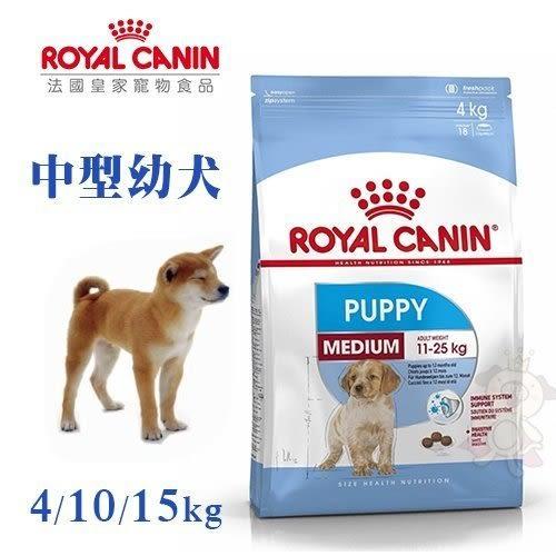 *WANG*【買兩包就送時尚運動毛巾一條】法國皇家AM32 中型幼犬 4公斤
