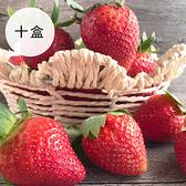 【鮮食優多】福山農場 阿里山有機轉型期草莓十盒