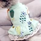 熱賣寵物衣服夏季薄款寵物裙子狗狗衣服泰迪博美比熊貴賓約克夏小型犬公主裙子 coco