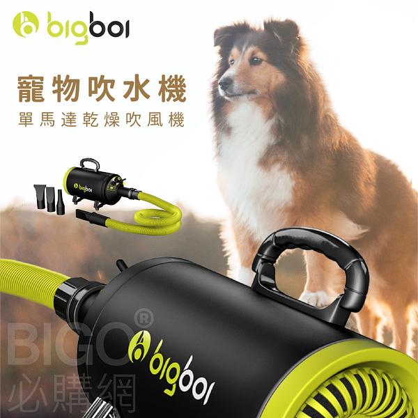 bigboi MINI 寵物單馬達吹風機 低噪音 寵物吹水機 吹風機 汽機車可用 恆溫設計 寵物 兩段溫控 家用
