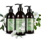 法國Najel 阿勒坡古皂液-淨透平衡頭皮SPA洗髮精 300ml 效期2021.06【淨妍美肌】