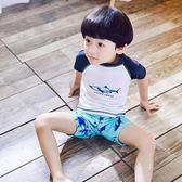 韓國兒童泳衣男童分體小童鯊魚泳裝游泳衣嬰兒寶寶中大童泳褲套裝【店慶滿月好康八五折】