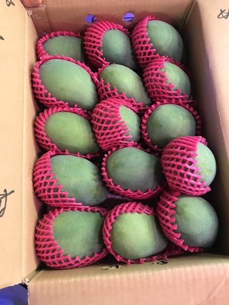 【果之蔬-全省免運】黑香芒果_大果X1箱 (12-15粒/10台斤±10%含箱重/箱-常溫配送)