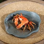 茶寵擺件 紫砂壶纯手工创意茶具茶宠物摆件 茶玩可养 变色螃蟹