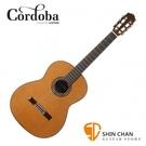 Cordoba 美國品牌 C9 全單板 紅杉木 古典吉他 附輕體硬盒 原廠公司貨 一年保固【C-9】
