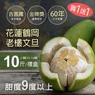 ★預購9/8-9/16出貨★買1送1組【...