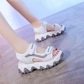夏天女士老爹涼鞋女2021年夏季新款百搭網紅女鞋厚底松糕休閒鞋子 【端午節特惠】