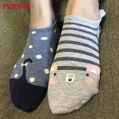 non-no儂儂褲襪《11入》後耳朵動物造型襪-24623-2