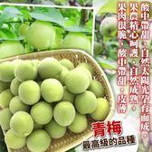 【果之蔬】台灣南投信義鄉青梅【1斤±5%/袋】鮮採青梅可自行DIY做脆梅
