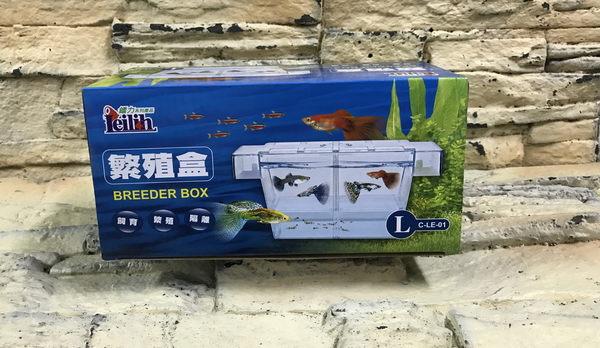 【西高地水族坊】鐳力多功能繁殖盒 產卵盒/飼育箱Breeder Box(L)(新型附上蓋、吸盤)