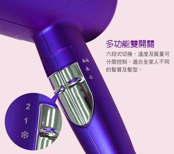 豬頭電器(^OO^) -【達新牌】光觸媒負離子吹風機(TS-6688)