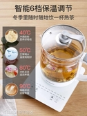 養生壺 養生壺全自動加厚玻璃多功能電煮茶壺燒水家用花茶壺煮茶器 快速出貨