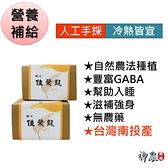 蟬吃茶佳葉龍茶包10包裝 GABA茶 低咖啡因 順口茶 元氣十足 幫助入睡 無農藥