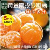 450元起【果之蔬-全省免運】 南投高山超迷你砂糖橘禮盒X1盒(5台斤±10%含盒重/盒)