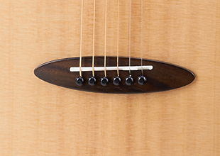 aNueNue M10 羽毛鳥/36吋小吉他 雲杉面板/桃花心木側背板 (面單板)附多樣配件【鳥吉他/旅行吉他】