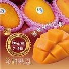 沁甜果園SSN.屏東夏雪芒果7-9顆裝/5kg,(共二箱)﹍愛食網