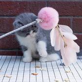 逗貓棒 逗貓棒手工diy斗貓棒 粉紅佳人款羽毛鈴鐺長款逗貓棒貓貓玩具 雲雨尚品