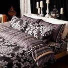 床包兩用被組 / 雙人特大【經典皇家黑】含兩件枕套 100%精梳棉 戀家小舖台灣製AAL515