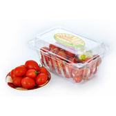 【陽光農業】嘉義聖女小蕃茄(約250g/盒、約7~8g/粒)