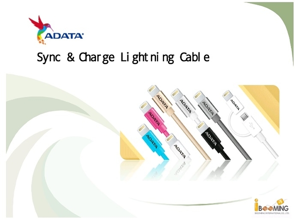 [NOVA成功3C]ADATA  Sync & Charge Cable  aluminum  2 in 1 傳輸線.