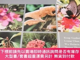 二手書博民逛書店DINGHUSHAN罕見BIOSPHERE RESERVE :Ecological Research Histor