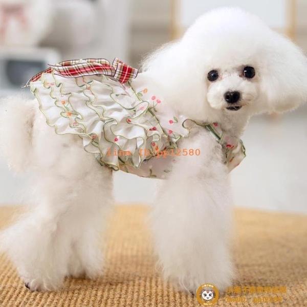 衣服公主裙子連衣裙夏季薄款泰迪比熊清涼透氣夏天可愛裙小型犬小狗狗【小獅子】