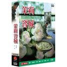 茉莉窨城 DVD ( 國語.閩南語發音 )