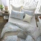 床包組 雙人加大床包組/克莉斯朵藍/美國棉授權品牌[鴻宇]台灣製2017