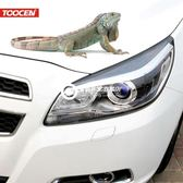 3d立體壁虎汽車貼紙 改裝車身貼 遮擋劃痕
