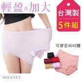 女性中大尺碼內褲 Tactel纖維 /46吋腰圍以內適穿 台灣製 No.5889 (5件組)-席艾妮SHIANEY