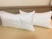 台灣製 白內枕-2個【00000800】內枕 枕頭 寢具【八八八】e網購