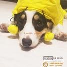 狗狗雨衣泰迪中型犬全包寵物雨衣四腳防水柯基雨披蜜蜂裝法斗巴哥【小獅子】