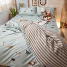 小貓窩 Q4加大床包雙人兩用被4件組 四季磨毛布 北歐風 台灣製造 棉床本舖