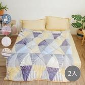 【青鳥家居】雙面法蘭絨羊羔絨暖暖毯被2件組(款式任選布倫特/伊卡洛斯/波比/艾利森/西維亞)